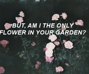flowers, grunge, and quotes image