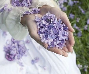 flowers, spring, and lilac image