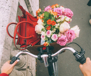flowers, bike, and bag image