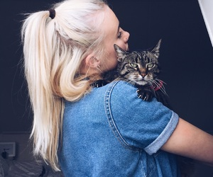 animal, blonde, and blue image