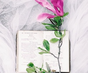 book, spring, and pink image