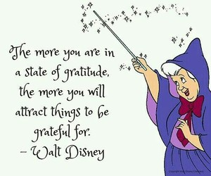gratitude, life, and quotes image