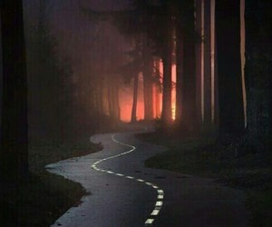 road, forest, and dark image