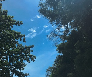 sky, subtitle, and trees image