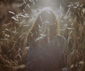 analogue, fields, and redhead image