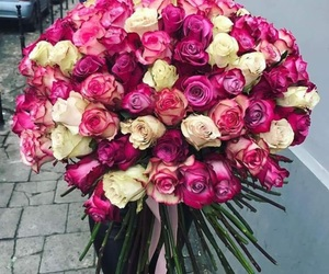 flowers and milion roses image