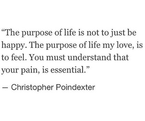 life, quote, and pain image