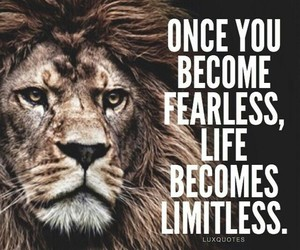 quotes, fearless, and limitless image