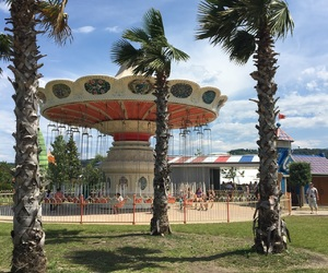 blue sky, palm trees, and attractions image