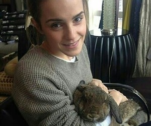 emma watson, rabbit, and beauty and the beast image