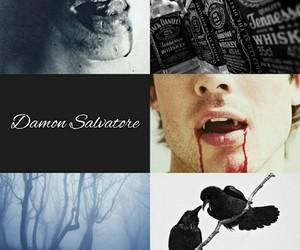 the vampire diaries and damon salvatore image