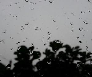april, nature, and rain image