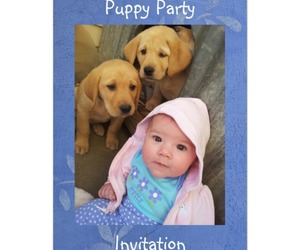 baby, birthday, and cute image