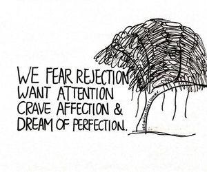 quote, rejection, and perfection image