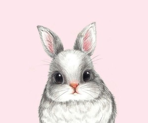 pink, rabbit, and wallpaper image