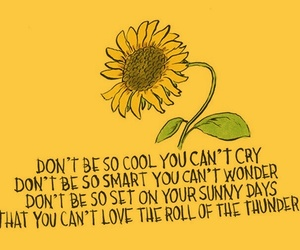 quotes, yellow, and sunflower image