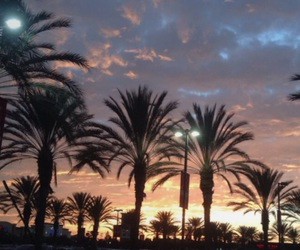 beautiful, clouds, and palmtrees image
