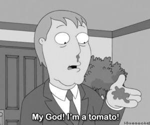 tomato, family guy, and funny image