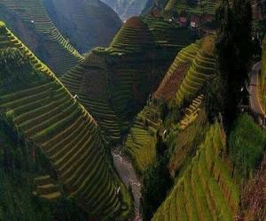 nature, Vietnam, and theme image