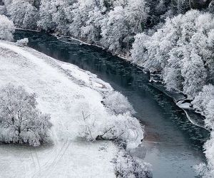 frost, snow, and winter wonderland image