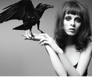girl, black and white, and crow image
