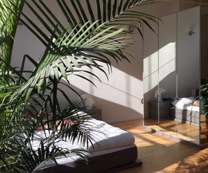 bedroom, light, and plants image