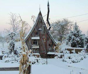 winter and cabin image