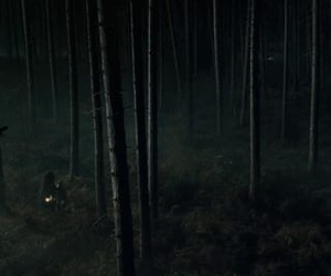 harry potter and forbidden forest image