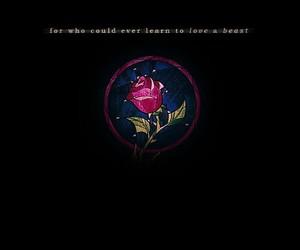 beauty, emmawatson, and rose image