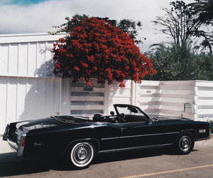 car, vintage, and flowers image