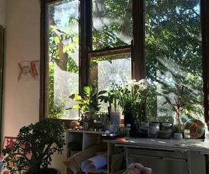plants, room, and nature image