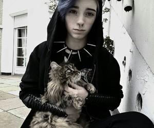 casa, cat, and dark image