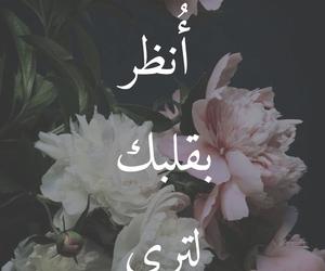 arabic, إقتباسات, and كلمات image
