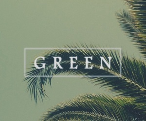 green and wallpaper image