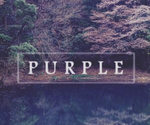 colours, purple, and tumblr image