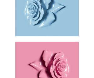 blue, roses, and strange image
