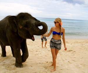 girl, elephant, and beach image