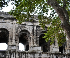 arbre, architecture, and Nimes image