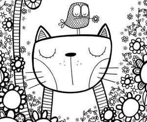 cat and mandala image