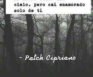 books, hush hush, and patch cipriano image