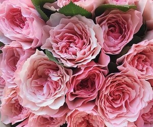 flowers, pink, and chic image
