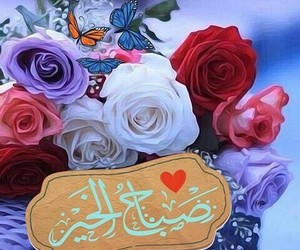 flowers, morning, and صباح image