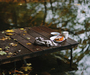 autumn, cozy, and nature image