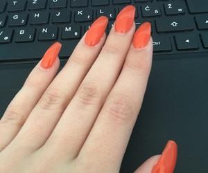 inspiration, long, and long nails image