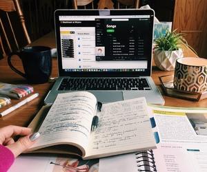 study, university, and book image