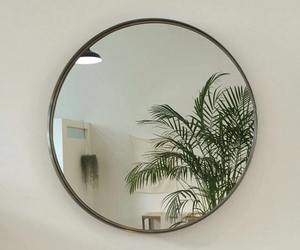 aesthetic, plants, and mirror image