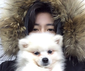 boy, ulzzang, and dog image