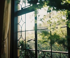 window, green, and home image