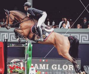 Mexico City, team work, and show jumping image
