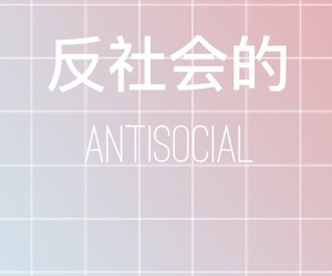 aesthetic, grid, and japanese image